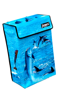 product:dolphin-boxVR.png