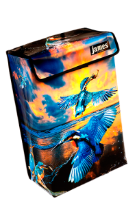 product:kingfisher-boxVR.png
