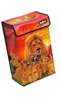 product:lion-BOX.png