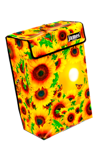 product:sunny-boxVR.png