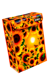 product:sunny-eco-boxVR.png